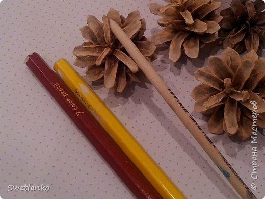 Возможно, в предверии новогодних праздников, этот небольшой мастер класс кому- нибудь пригодится.Вот до такого цвета удалось отбелить обыкновенные подмосковные шишки. Для того, чтобы можно было представить цвет, я  положила рядом с шишкой карандаши желтого и светло коричневого цветов, а на самой шишке деревянная ручка кисточки (самая простая из светлого дерева). фото 1