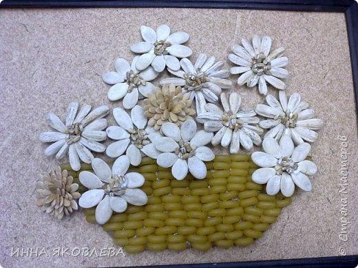 На создание нас вдохновила работа Олечки Симоновой. Конечно, мы использовали другие материалы, те, что были под рукой. -макароны -семечки тыквы -семена подсолнуха -маш -семечки дыни -семечки арбуза -семечки перца -лля серединок цветов кукурузная крупа и перловка фото 7