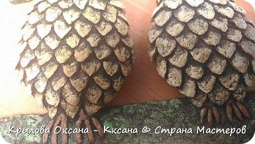 вот такие совята родились в виде ключницы (крючки в процессе покупки)) фото 4