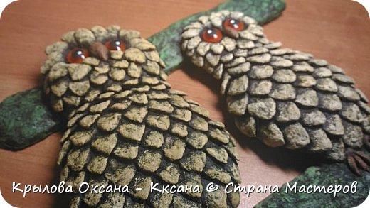 вот такие совята родились в виде ключницы (крючки в процессе покупки)) фото 7