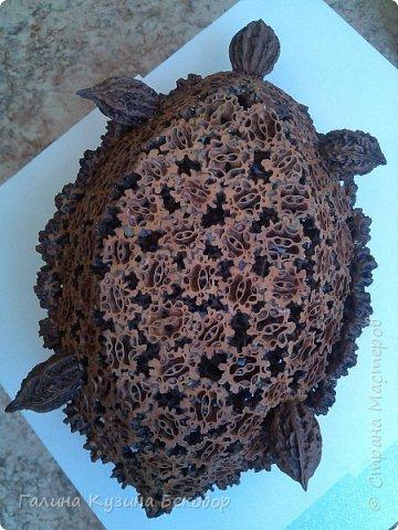 Черепашки из маньчжурского ореха фото 4