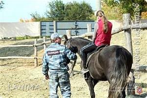 хочу показать вам моих любимцев,это лошади, мои собственные и  питомцы в конюшне конной полиции. это Честер,он будёновской породы,очень своенравный и характерный. без седла паинька а вот под седлом монстр. фото 23