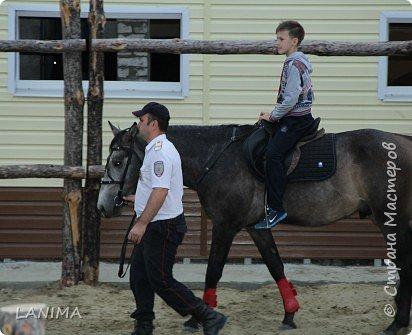 хочу показать вам моих любимцев,это лошади, мои собственные и  питомцы в конюшне конной полиции. это Честер,он будёновской породы,очень своенравный и характерный. без седла паинька а вот под седлом монстр. фото 22