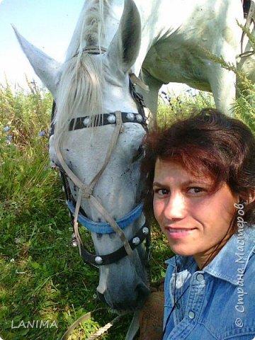 хочу показать вам моих любимцев,это лошади, мои собственные и  питомцы в конюшне конной полиции. это Честер,он будёновской породы,очень своенравный и характерный. без седла паинька а вот под седлом монстр. фото 9