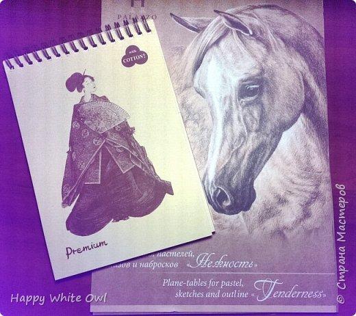 Здравствуйте!  Сегодня хочу поделиться с Вами очередной новогодней открыткой. Здесь использовала декоративную бумагу от АртУзора Снежные истории. МК можно посмотреть здесь https://www.youtube.com/watch?v=1m-V6Tf-SdA&index=10&list=PLw98jevtt7LtPgxEkpOhYuMZBXQkaNe4O.  Я лишь капельку изменила размеры в двух деталях и сделала открытку открывающейся. В остальном всё как в МК. фото 7