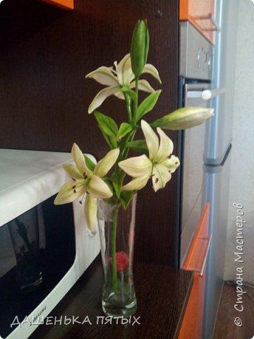 Приветствую всех заглянувших:-)вот такая ветка лилии у меня получилась:-)делала я по мастер-классу Ирины Батуевой http://stranamasterov.ru/node/1055126 Ну до ее шикарного цветка мне конечно далеко:-)у меня пока получается толстоватые и стебель и листочки:-(ну есть к чему стремиться:-)планирую сделать ещё парочку таких веточек и подарить на день рождения маме:-) фото 7