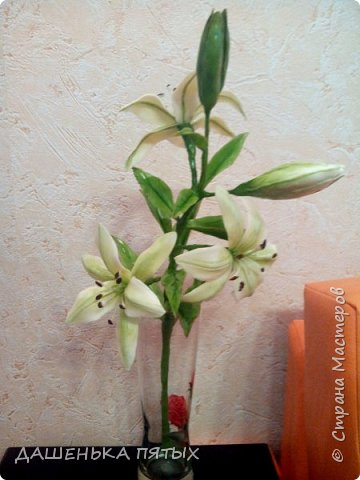 Приветствую всех заглянувших:-)вот такая ветка лилии у меня получилась:-)делала я по мастер-классу Ирины Батуевой http://stranamasterov.ru/node/1055126 Ну до ее шикарного цветка мне конечно далеко:-)у меня пока получается толстоватые и стебель и листочки:-(ну есть к чему стремиться:-)планирую сделать ещё парочку таких веточек и подарить на день рождения маме:-) фото 4