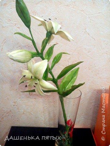 Приветствую всех заглянувших:-)вот такая ветка лилии у меня получилась:-)делала я по мастер-классу Ирины Батуевой http://stranamasterov.ru/node/1055126 Ну до ее шикарного цветка мне конечно далеко:-)у меня пока получается толстоватые и стебель и листочки:-(ну есть к чему стремиться:-)планирую сделать ещё парочку таких веточек и подарить на день рождения маме:-) фото 5