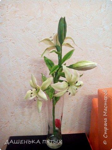 Приветствую всех заглянувших:-)вот такая ветка лилии у меня получилась:-)делала я по мастер-классу Ирины Батуевой http://stranamasterov.ru/node/1055126 Ну до ее шикарного цветка мне конечно далеко:-)у меня пока получается толстоватые и стебель и листочки:-(ну есть к чему стремиться:-)планирую сделать ещё парочку таких веточек и подарить на день рождения маме:-) фото 1