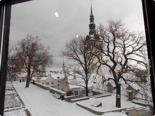На осенних каникулах мы с мужем решили отправиться в  горячо любимый нами Таллин. Любовь эта была с первого взгляда и продолжается уже три года. Уезжали мы из Владимира со снегом. А Таллин встретил нас осенью. Желтые березы, зеленые каштаны  и липы. По дороге в наш отель мы фотографировали. фото 19