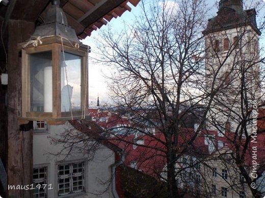 На осенних каникулах мы с мужем решили отправиться в  горячо любимый нами Таллин. Любовь эта была с первого взгляда и продолжается уже три года. Уезжали мы из Владимира со снегом. А Таллин встретил нас осенью. Желтые березы, зеленые каштаны  и липы. По дороге в наш отель мы фотографировали. фото 7
