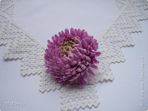 Хризантема. фото 1