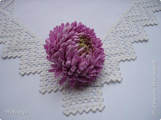 Хризантема. фото 2