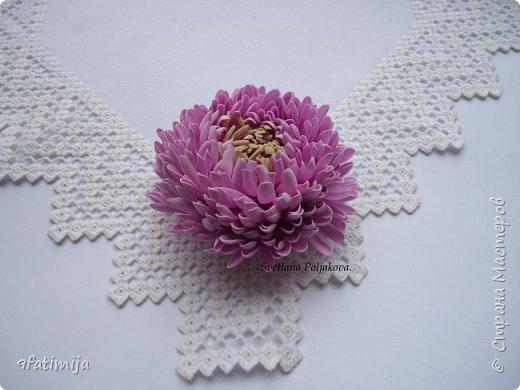 Хризантема. фото 3