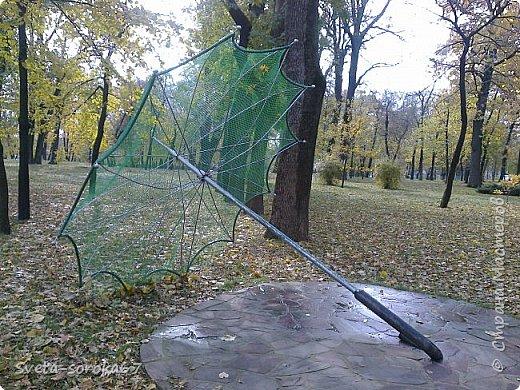 Есть в Краснодаре  замечательное место  - Чистяковская  роща.  Этот забытый  Гулливером зонтик  лежит у входа и ждет своего хозяина.  фото 1