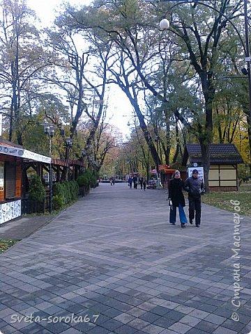 Есть в Краснодаре  замечательное место  - Чистяковская  роща.  Этот забытый  Гулливером зонтик  лежит у входа и ждет своего хозяина.  фото 7