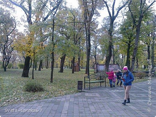 Есть в Краснодаре  замечательное место  - Чистяковская  роща.  Этот забытый  Гулливером зонтик  лежит у входа и ждет своего хозяина.  фото 9