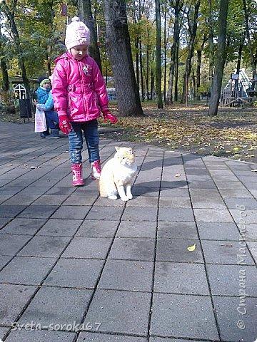 Есть в Краснодаре  замечательное место  - Чистяковская  роща.  Этот забытый  Гулливером зонтик  лежит у входа и ждет своего хозяина.  фото 11