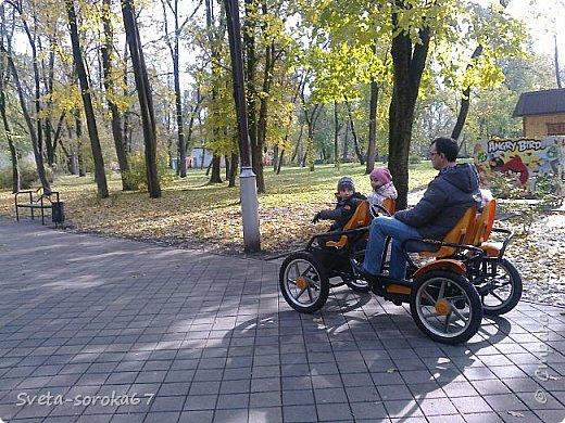 Есть в Краснодаре  замечательное место  - Чистяковская  роща.  Этот забытый  Гулливером зонтик  лежит у входа и ждет своего хозяина.  фото 13