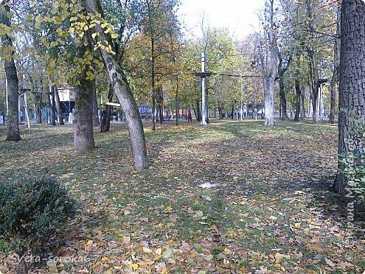 Есть в Краснодаре  замечательное место  - Чистяковская  роща.  Этот забытый  Гулливером зонтик  лежит у входа и ждет своего хозяина.  фото 17