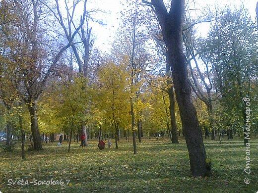Есть в Краснодаре  замечательное место  - Чистяковская  роща.  Этот забытый  Гулливером зонтик  лежит у входа и ждет своего хозяина.  фото 22