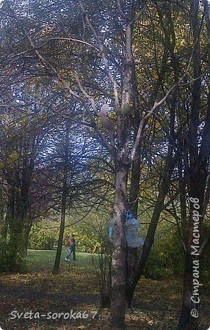 Есть в Краснодаре  замечательное место  - Чистяковская  роща.  Этот забытый  Гулливером зонтик  лежит у входа и ждет своего хозяина.  фото 32