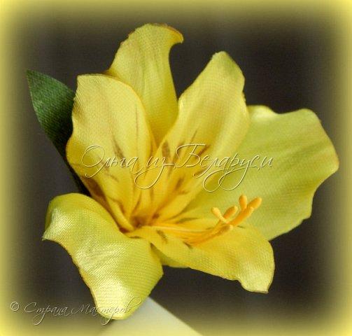 Год назад привлек меня изумительной красоты цветок альстромерия,долго я к нему не решалась подойти),любовалась издали и собирала фото,которые изучала и подробно рассматривала.Да вот только смотреть да рассматривать-это одно,а дело делать -это другое.Без проб и ошибок никак не обойтись,вот я и взялась за практику.     Перед вами  моя третья попытка на сегодняшний день.     Пока тычинки не реалистичные,а самые обычные.Пытаюсь понять:каким именно должен быть шаблон лепестка,как его обработать.... тем не менее выставляю на всеобщее обозрение,к критике готова) фото 17
