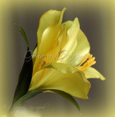Год назад привлек меня изумительной красоты цветок альстромерия,долго я к нему не решалась подойти),любовалась издали и собирала фото,которые изучала и подробно рассматривала.Да вот только смотреть да рассматривать-это одно,а дело делать -это другое.Без проб и ошибок никак не обойтись,вот я и взялась за практику.     Перед вами  моя третья попытка на сегодняшний день.     Пока тычинки не реалистичные,а самые обычные.Пытаюсь понять:каким именно должен быть шаблон лепестка,как его обработать.... тем не менее выставляю на всеобщее обозрение,к критике готова) фото 16
