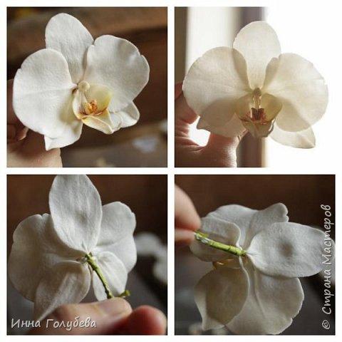 Наконец- то исполнилась моя давняя мечта- освоить фаленопсис! И хоть есть еще над чем работать,но,надеюсь,что я стала намного ближе к цели) Пока налепила цветы,оформлять в ветку буду позже,когда прийдет вайнер листика фаленопсиса. И как всегда,делюсь с вами моим скромным опытом по созданию этого цветочка)  фото 24