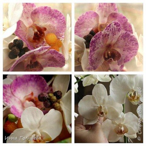 Наконец- то исполнилась моя давняя мечта- освоить фаленопсис! И хоть есть еще над чем работать,но,надеюсь,что я стала намного ближе к цели) Пока налепила цветы,оформлять в ветку буду позже,когда прийдет вайнер листика фаленопсиса. И как всегда,делюсь с вами моим скромным опытом по созданию этого цветочка)  фото 25