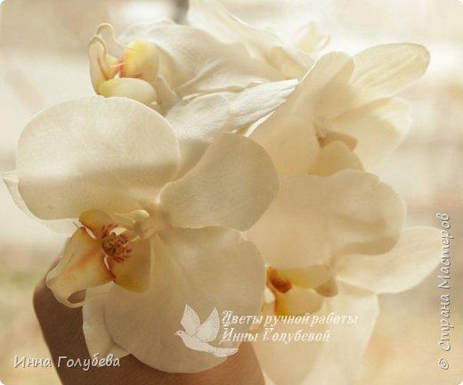 Наконец- то исполнилась моя давняя мечта- освоить фаленопсис! И хоть есть еще над чем работать,но,надеюсь,что я стала намного ближе к цели) Пока налепила цветы,оформлять в ветку буду позже,когда прийдет вайнер листика фаленопсиса. И как всегда,делюсь с вами моим скромным опытом по созданию этого цветочка)  фото 4