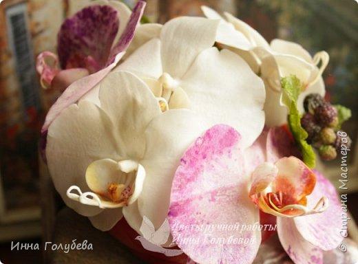 Наконец- то исполнилась моя давняя мечта- освоить фаленопсис! И хоть есть еще над чем работать,но,надеюсь,что я стала намного ближе к цели) Пока налепила цветы,оформлять в ветку буду позже,когда прийдет вайнер листика фаленопсиса. И как всегда,делюсь с вами моим скромным опытом по созданию этого цветочка)  фото 1