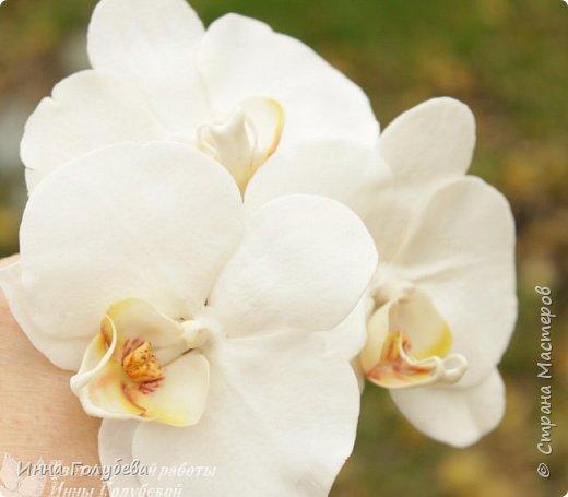 Наконец- то исполнилась моя давняя мечта- освоить фаленопсис! И хоть есть еще над чем работать,но,надеюсь,что я стала намного ближе к цели) Пока налепила цветы,оформлять в ветку буду позже,когда прийдет вайнер листика фаленопсиса. И как всегда,делюсь с вами моим скромным опытом по созданию этого цветочка)  фото 2