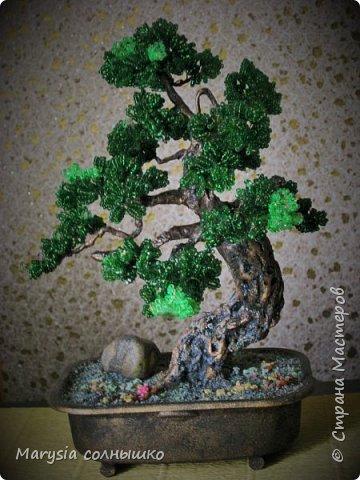 Бисерный бонсай. фото 4