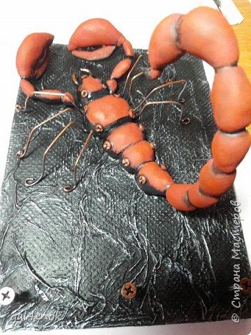 Всем добрый вечер... Очередная моя небольшая работа... Скорпиона уже лепила раньше, только он был чёрным. А слепив второго, просмотрев картинки в инете, решила сделать в цвете... фото 2