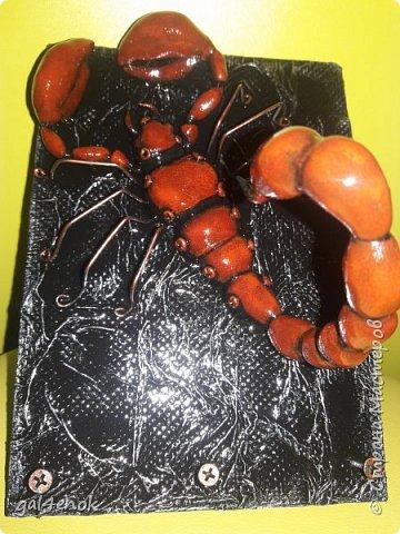Всем добрый вечер... Очередная моя небольшая работа... Скорпиона уже лепила раньше, только он был чёрным. А слепив второго, просмотрев картинки в инете, решила сделать в цвете... фото 6