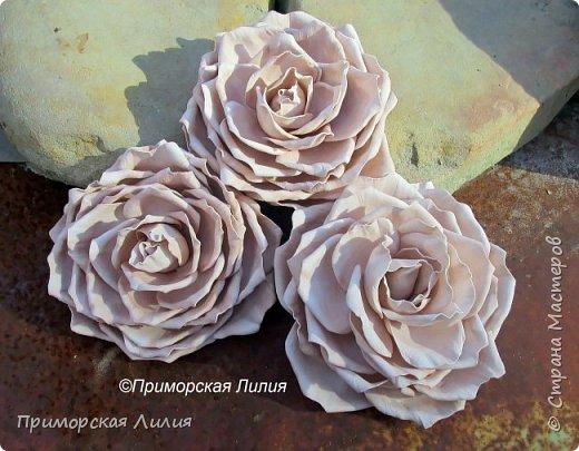 Три кофейные розы на универсальном креплении (могут использоваться как броши и как заколки). Выполнены на заказ. фото 2