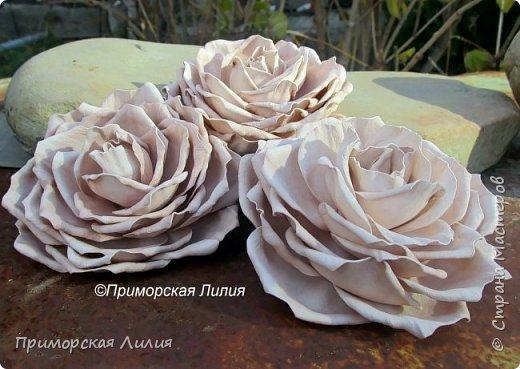 Три кофейные розы на универсальном креплении (могут использоваться как броши и как заколки). Выполнены на заказ. фото 1