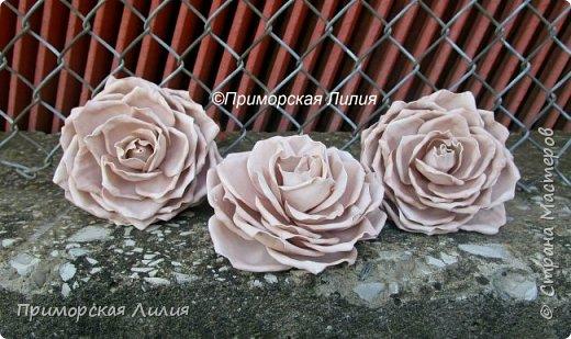 Три кофейные розы на универсальном креплении (могут использоваться как броши и как заколки). Выполнены на заказ. фото 3