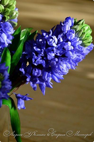 Добрый день ! Наконец-то  вышло солнышко, и я отсняла мой новый букет гиацинтов! Высота 35 см, в каждом соцветии около 100 цветочков. фото 5