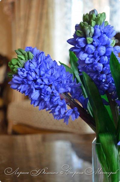 Добрый день ! Наконец-то  вышло солнышко, и я отсняла мой новый букет гиацинтов! Высота 35 см, в каждом соцветии около 100 цветочков. фото 9