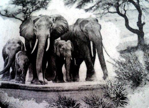 Подруга коллекционирует слонов. В подарок на ее день рождения сделала тарелочку со слонами. фото 3