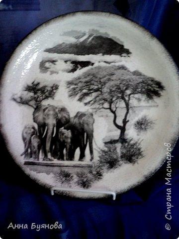 Подруга коллекционирует слонов. В подарок на ее день рождения сделала тарелочку со слонами. фото 4