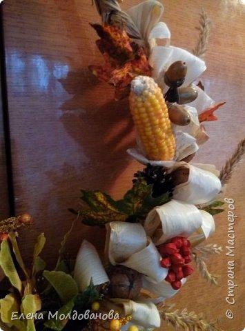 В каждом веночке или корзинке от 12 до 15 различных семян, плодов.  фото 2