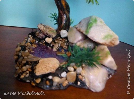 Камни все с морского побережья фото 9