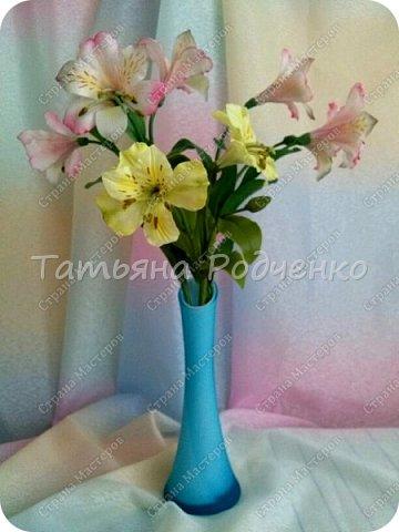 Альмстромерия. фото 2