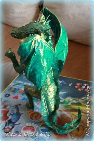 Мои Драконы фото 2