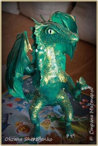 Мои Драконы фото 4