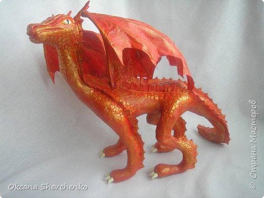 Мои Драконы фото 5