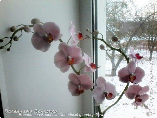 Здравствуйте дорогие мастера и мастерицы!!!!Уже делала такую орхидейку, но попросили слепить еще ,как же отказать.Ну  и как обычно и вам решила показать. фото 5